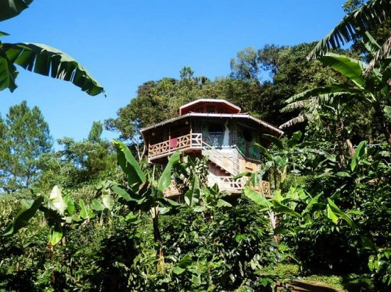 Finca Neblina Del Bosque Esteli Nicaragua Vianica Com