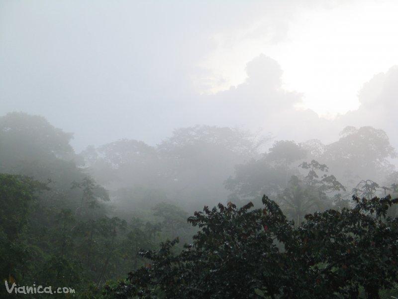 Photo Gallery Indio Ma 237 Z Biological Reserve Vianica Com
