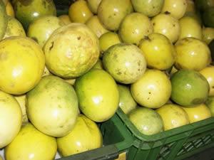 passion fruit peak season